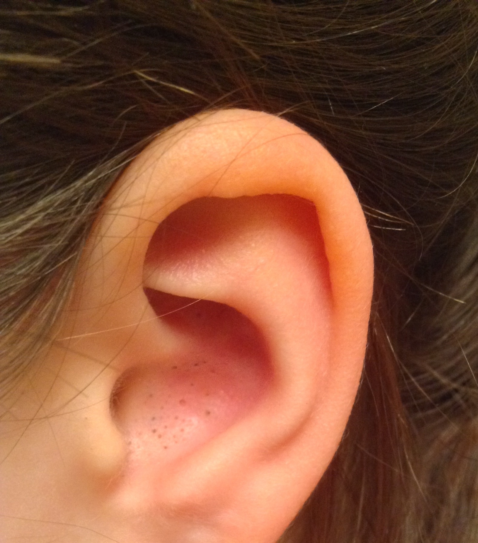 Красное ухо картинка
