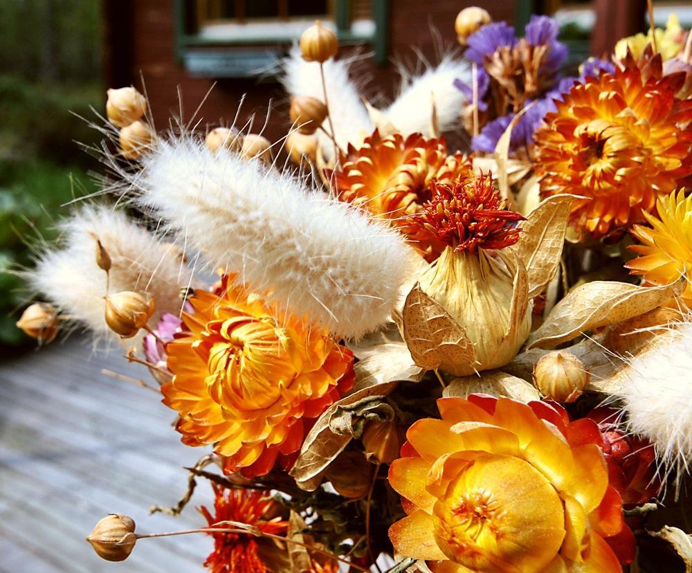 Можно ли хранить дома засохшие цветы