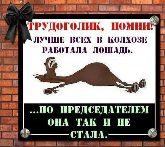https://i0.u-mama.ru/38e/cdc/d82/5f7868babdcb279008ad67b97b86d289.jpg