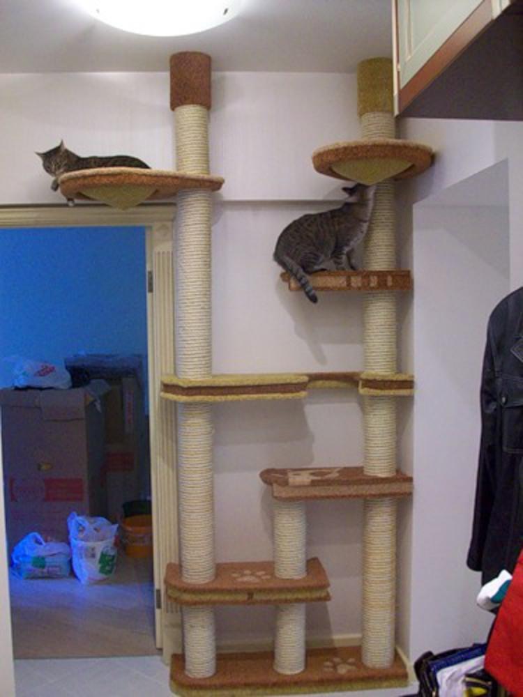 уголок для кошек своими руками фото возможно, посотрудничаем