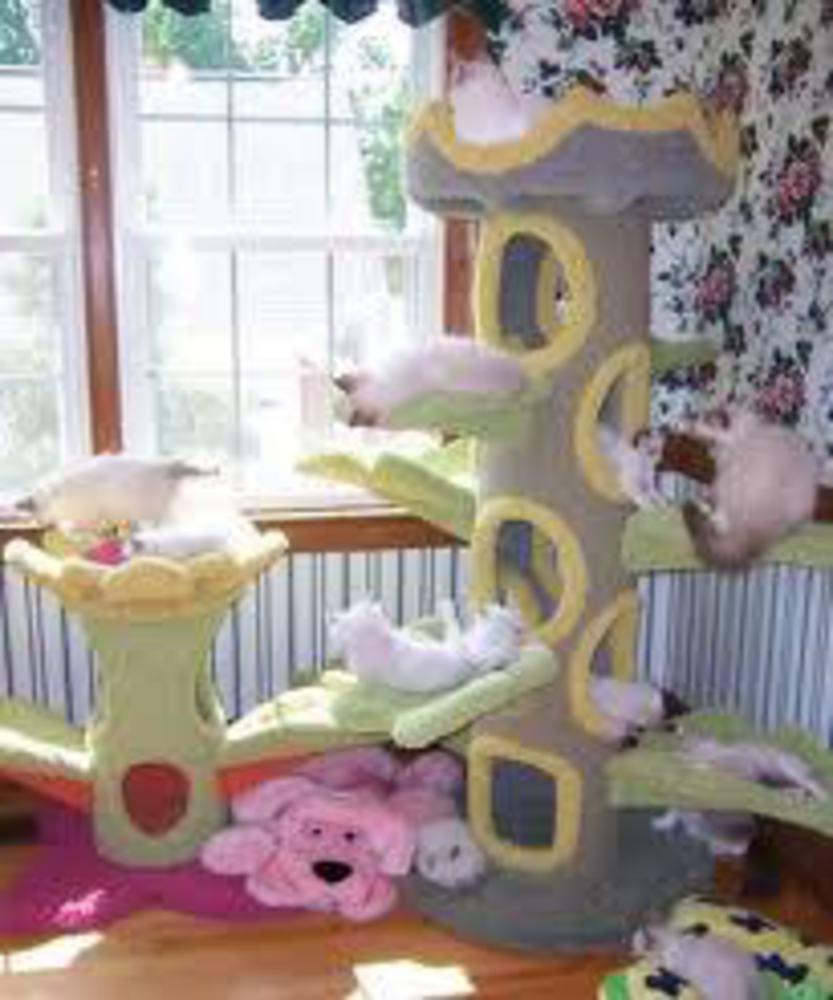 Выкройки домики для кошек своими руками
