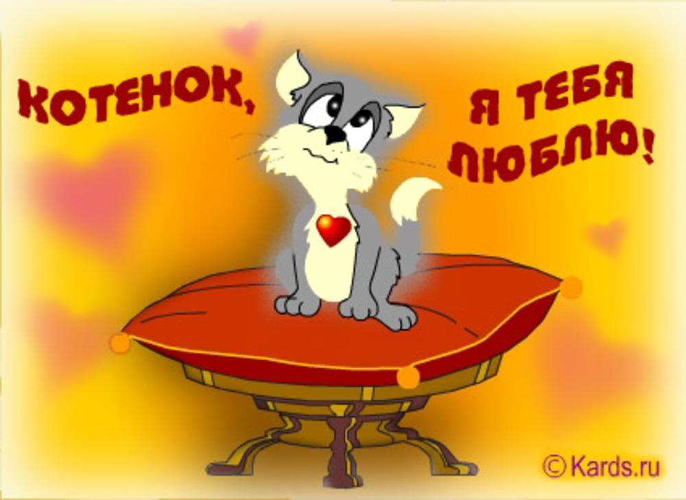 Картинка с надписью люблю тебя котенок мой, про
