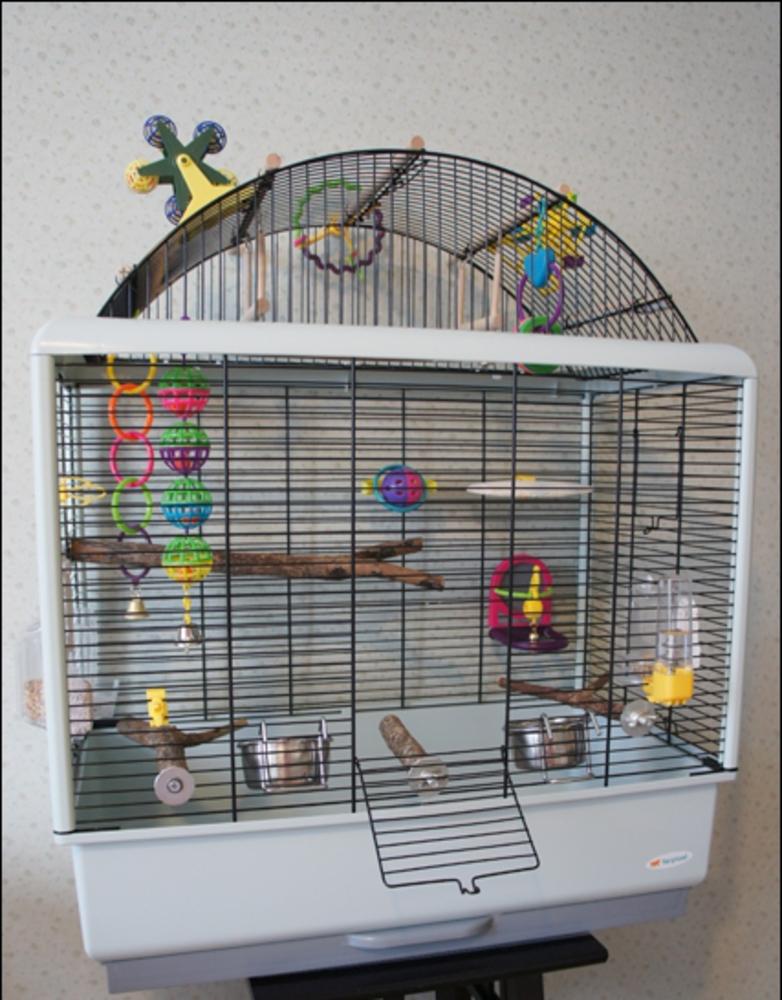 Игрушки для волнистых попугаев в клетку