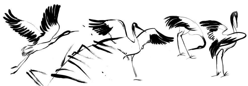 Картинка журавля черно белый