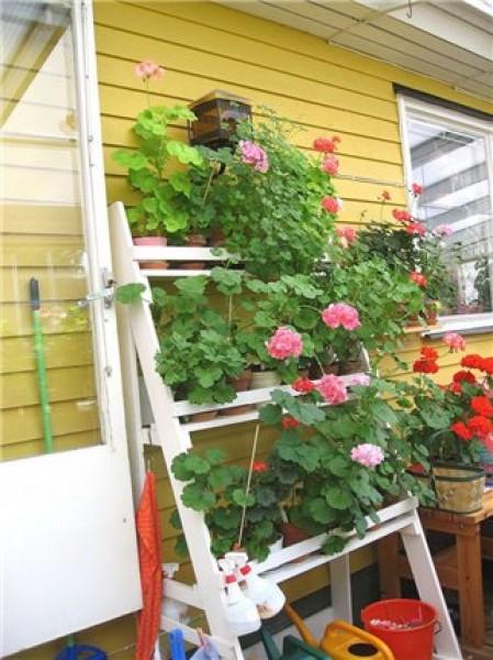 Полки для цветов на балконе фото..