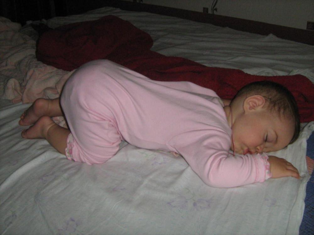 спящие попой к верху про динозавров