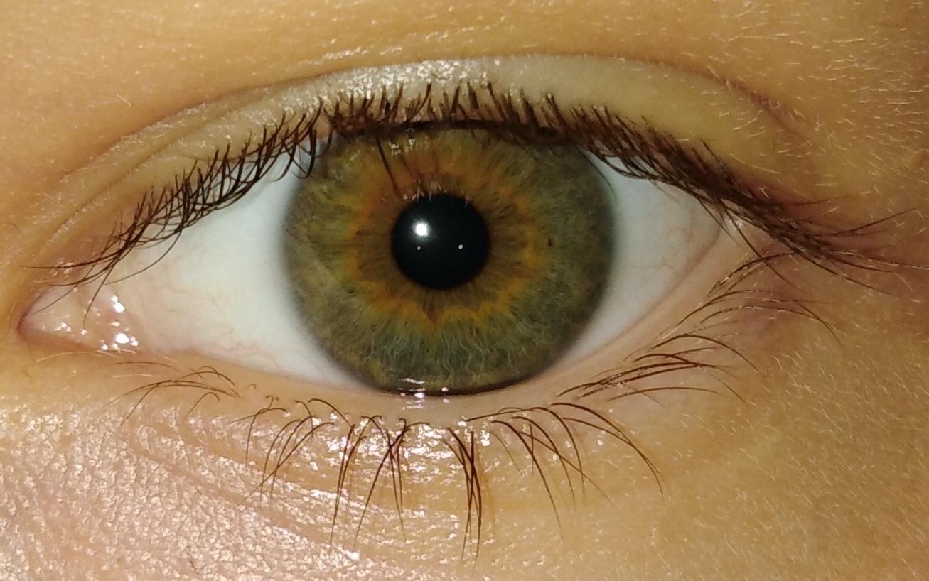также позволяет формирование карих глаз фото самые интересные обсуждаемые
