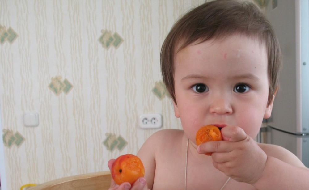 Парник своими руками: для огурцов, помидор, перца, рассады, в